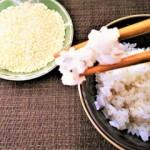 ダイエットで効果的にヤセるための食事と考え方5選